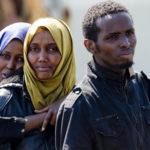 Tirocinio con persone migranti
